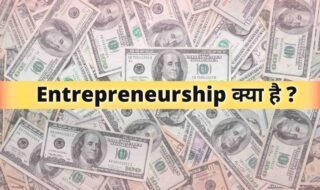 What is Entrepreneurship, entrepreneurship meaning in Hindi जानिए हिंदी में